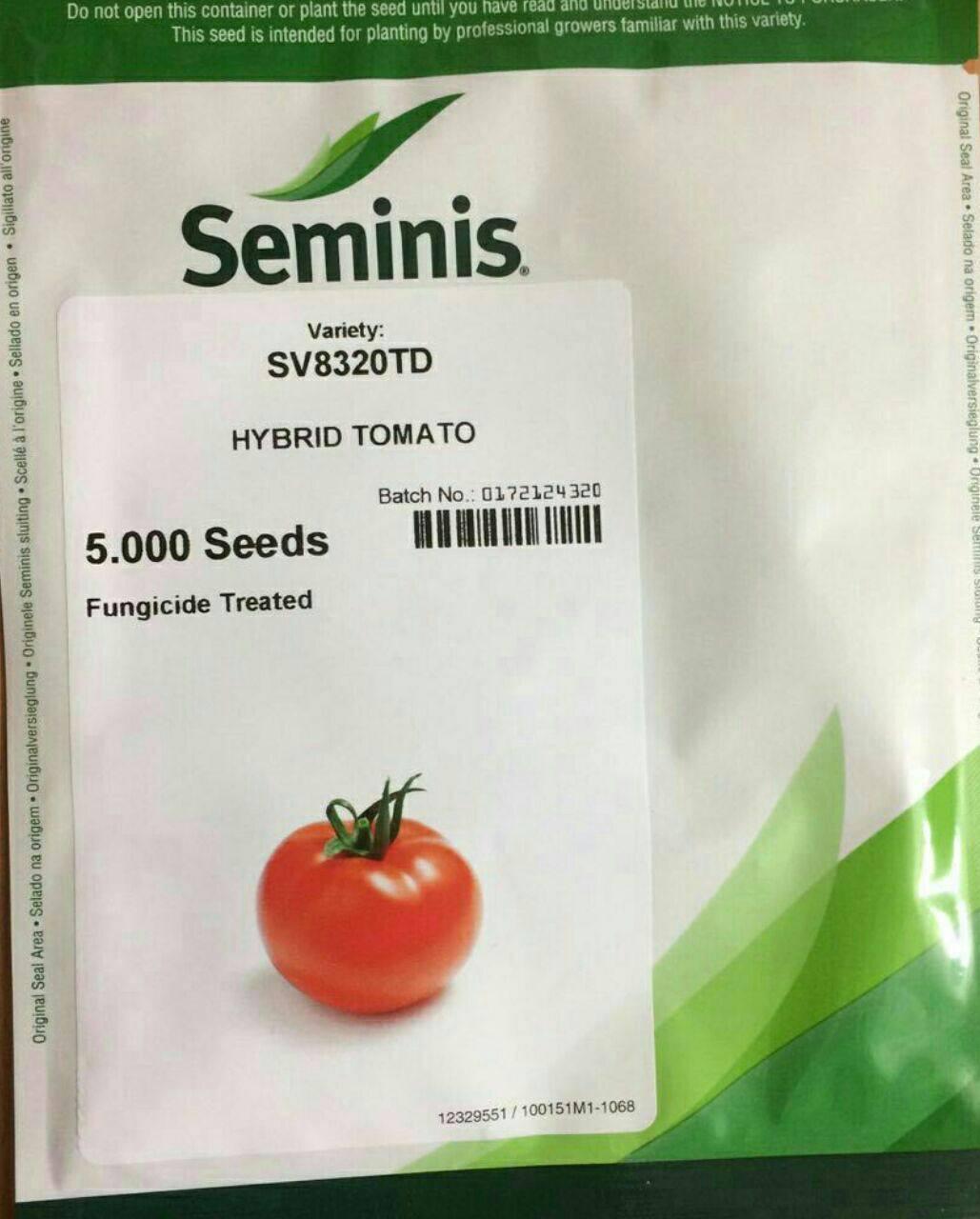 8320 بذر گوجه فرنگی
