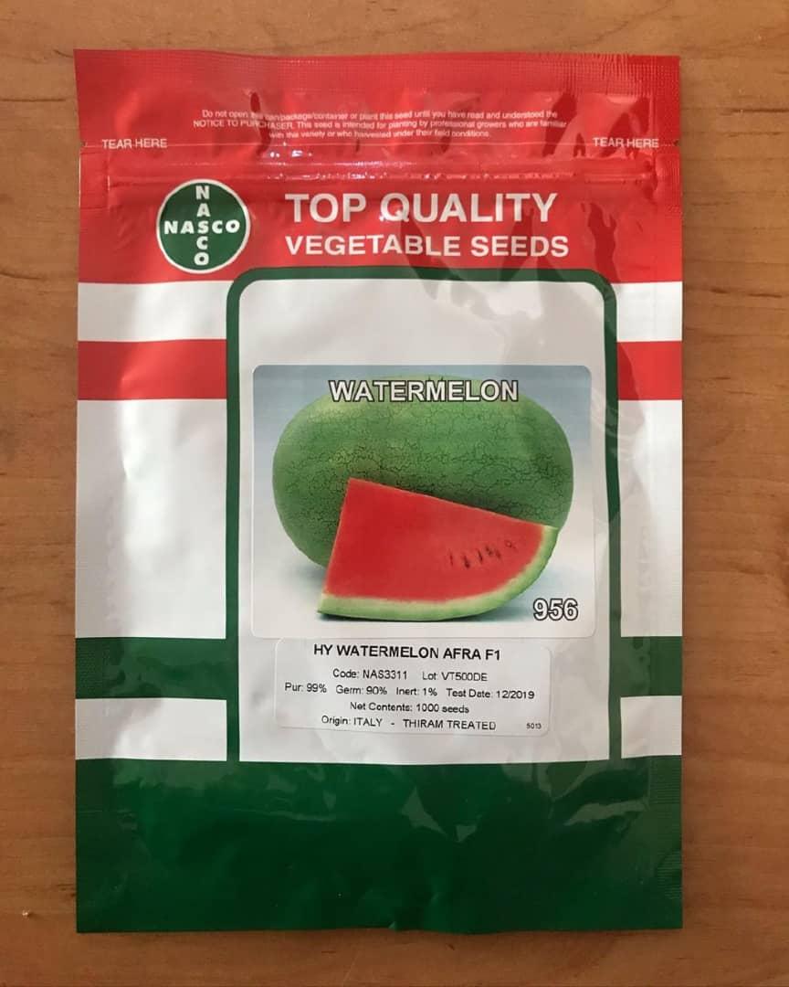 بذر هندوانه افراF1 محصول شرکت ناسکو