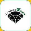 شرکت دایموند گرو
