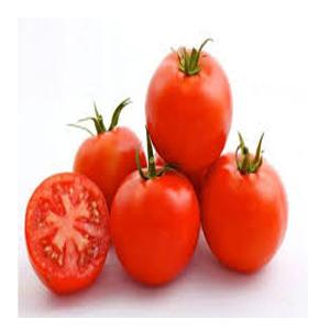 بذر گوجه فیرمونت Firmont F1